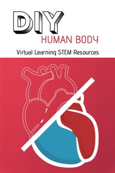 Investigate and learn about the human body at home, at school, or anywhere with 13 easy-to-use, hands-on activities, plus videos and more. Available in English and Spanish. Hands On Activities, Learning Resources, Investigations, Human Body, Middle School, Spanish, English, Science, Letters