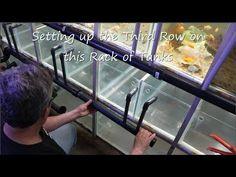 Fishroom Renovation - YouTube