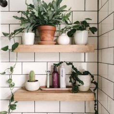 Planter Shelving Will Add Charm in Your Home Design Inspiration For those who are addicted to natural greenery, you can bring them as decoration in the interior spaces. Indeed, a touch of greenery can shift a natur. Home Design, Design Loft, Deco Design, Design Ideas, Design Design, Design Inspiration, Bathroom Plants, Boho Bathroom, Small Bathroom