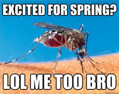 From the Public Health memes blog. Reduce your risk for West Nile Virus! Wear DEET products!