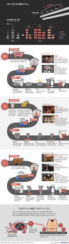 우리 식탁위 고기들 어디에서 오는 걸까 - 조선닷컴 인포그래픽스 - 인터랙티브 > 사회