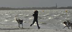 Storm bij het IJsselmeer