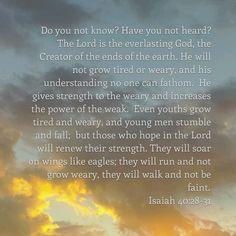 Amy Eid's Profile | The Bible App | Bible.com