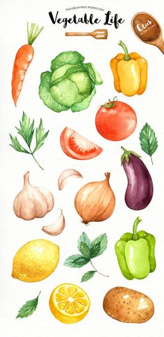 The set of high quality hand painted watercolor vegetables images in bright and fresh color palette. Included 4 wooden spoon, fork and spatulas. Watercolor Clipart, Watercolor Flower, Watercolor Food, Watercolor Illustration, Watercolor Paintings, Watercolor Wallpaper, Watercolor Ideas, Watercolor Artists, Abstract Paintings