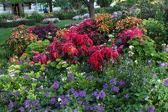 Bill's visit to Temple Square in Utah | Fine Gardening