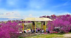 Picniking in Badakhshan Afghanistan