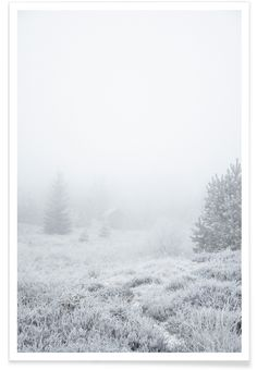 The House In The Forest -  Studio Nahili. Fresh snow and a foggy morning make for a beautiful all white landscape