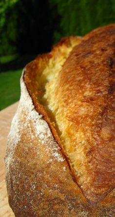 pane di sole (altamura)