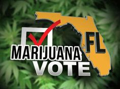 Florida Poll: Majority of Voters Back Legalization, Super-Majority Endorse Medical Cannabis | Weedist