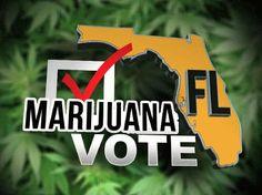 Florida Poll: Majority of Voters Back Legalization, Super-Majority Endorse Medical Cannabis | Weedist