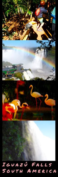 What is it like to experience Iguazu Falls in Argentina and Brazil? Find out about visiting these wonder of nature from both sides. #iguazu #travel #tips #advice #argentina #brazil