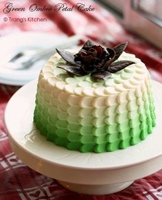 green ombre petal cake with a chocolate rose.