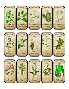 Vintage Inspired Assorted Herb Spice Food Tea Bottle Jar Labels Stickers   eBay