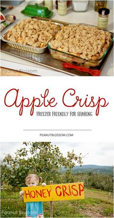 The BEST, most completely addictive apple crisp ever. Perfect for those fall apples. One cooking session and you have two: one for tonight and one for the freezer or for sharing!