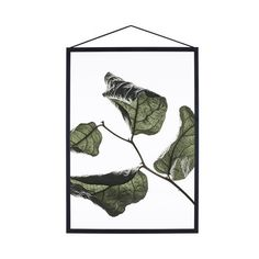 Print Floating Leaves No. 3, A4