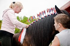 Heavy Horse Plaiting & Other stuff! - Horse and Hound Forums