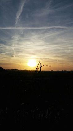 Sunset 11-6-14