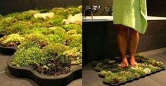 How to Make a Living Moss Shower Mat