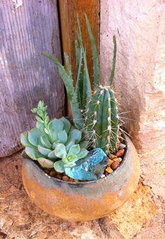 Handmade Pottery Cactus Garden!