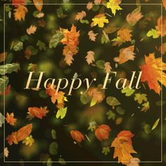 Olay Beauty Notes   Holiday Happy First Day of Fall! New seasons are a...