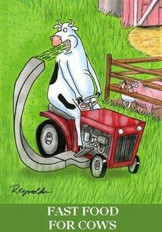 Spanish jokes for kids, chistes visuales: Fast food for cows / Comida rápida para vacas. in Spanish