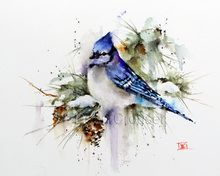 WINTER BLUEJAY by Dean Crouser