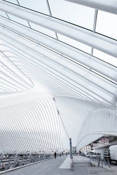 Liege-Guillemins TGV Railway Station,  Liege, Belgium  Santiago Calatrava