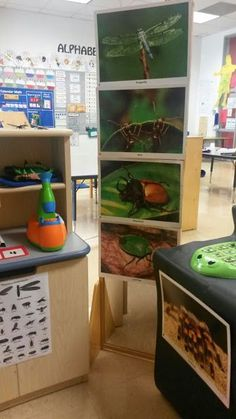Turning dramatic play into an Entomologist Lab! (bug/insect study)