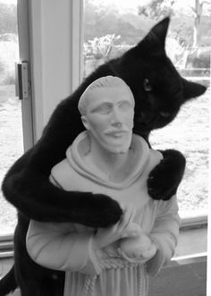 Saint Francis with a cat on his head...is NOTHING sacred to a CAT!!!!
