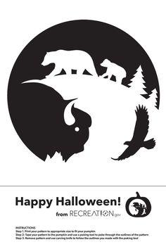 Pumpkin Carving Templates, Pumpkin Stencil, Art Icon, Nature Scenes, Weird Facts, Fall Crafts, Superhero Logos, Happy Halloween, Halloween Decorations