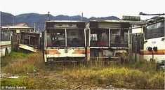 Los Trolebuses de Bogotá Cabin, Buses, House Styles, City, Classic Trucks, Abandoned Places, Ruins, Urban, Pictures