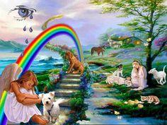 The rainbowbridge