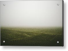 Foggy Autumn Morning Acrylic Print by Cesare Bargiggia