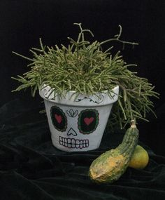 Filocarpa. Mexican Halloween, Planter Pots, Skull, Skulls, Sugar Skull