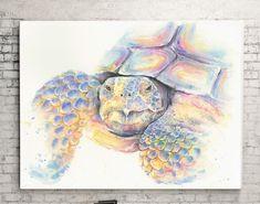 Watercolor Desert Tortoise, glicee print, colorful turtle wall decor, desert animal art Bear Watercolor, Desert Animals, Bear Paintings, Wildlife Art, Nursery Art, Tortoise, Turtle, Fine Art Prints, Original Art