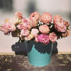 Peonies & Roses - thedailyblossom.com.au