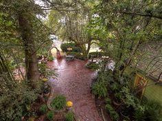 Incredible backyard
