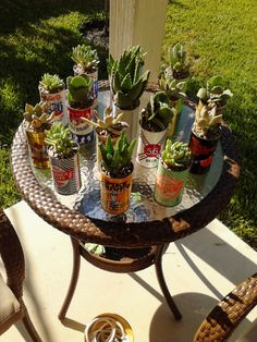 beer can planters Garden Of Eve, Beer Garden, Beer Crafts, Minimalist Home Decor, How To Make Beer, House Plants, Sonora Desert, Planters, Hotel California