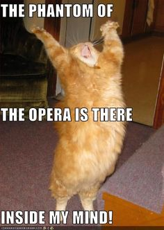 Me after seeing Phantom of the Opera for the first time...and second... and third.........