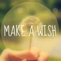 Photopoll: Make a wish