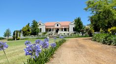 All the info about Wine tasting at Ormonde Vineyards Wine Estate in Darling, South Africa South African Wine, Wine Vineyards, Bacchus, Napa Valley, Wineries, Wine Country, Wine Tasting, Red Wine, Scene