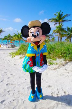 Sweet Minnie Mouse in her beach outfit at Castaway Cay.