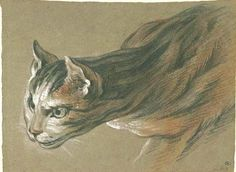 Alexandre François Desportes (French, 1661-1743) - Cat, late 17th century / early 18th century - Paris; Musée du Louvre