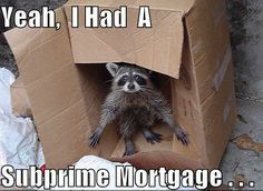 Yeah, I had a subprime mortgage.