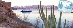 The countdown begins: Mexico Sea of Cortés Cruises | Un-Cruise Adventures #Love2Cruise