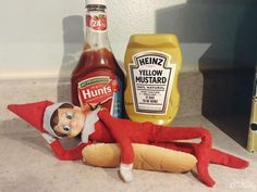 Elf on the Shelf is a hot dog