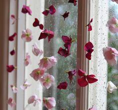 flower curtain, window treatment