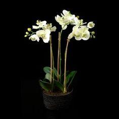 Phalaenopsis artificiel blanc en pot trois branches 45 cm