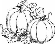 23 best pumpkin drawing images on pinterest in 2018 pumpkin