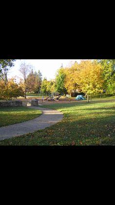 Voy al parque por bicicleta para correr.